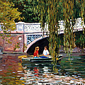 Under The Bow Bridge Central Park by Roelof Rossouw