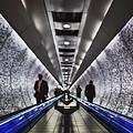 Underground Network by Evelina Kremsdorf