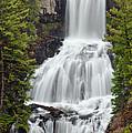 Undine Falls Yellowstone National Park by D Robert Franz