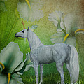 Unicorn And Lilies by Smilin Eyes  Treasures