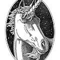 Unicorn-black-white-drawing by Gordon Punt