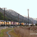 Union Pacific Locomotive Trains . 7d10558 by Wingsdomain Art and Photography