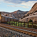 Union Pacific Tracks by Peter Tellone