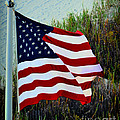United States Of America by Gerlinde Keating - Galleria GK Keating Associates Inc