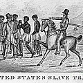 United States Slave Trade by Photo Researchers