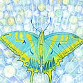 Unity Butterfly by Charlotte Garrett