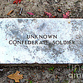 Unknown Confederate Soldier by Renee Trenholm