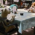 Unusual Diners by Sally Weigand