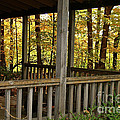 Up North Porch by Susan Herber