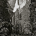 Upper And Lower Yosemite Falls by Eric Tressler