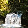 Upper Butte Creek Falls 3 by Linda Hutchins