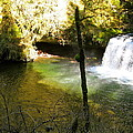 Upper Butte Creek Falls And Plunge Pool by Linda Hutchins
