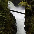 Upper Qualicum Falls 2 by Bob Christopher
