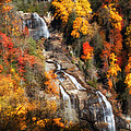 Upper Whitewater Falls by Lynne Jenkins