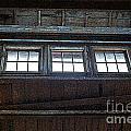 Upper Windows by Randy Harris
