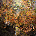 Upstream by Jai Johnson