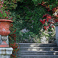 Urn And Steps At A Villa On Lake Como by Greg Matchick