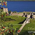 Urquhart Castle On Loch Ness by Denise Dempster