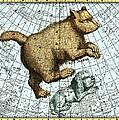 Ursa Major Constellation, Bode Star Atlas by Detlev Van Ravenswaay