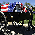 U.s. Air Force Honor Guard Straightens by Stocktrek Images