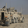 U.s. Army Cougar Mrap Vehicles by Terry Moore