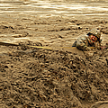 U.s. Army Soldier Fights Racing Water by Stocktrek Images