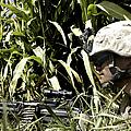 U.s. Marine Maintains Security by Stocktrek Images