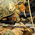 U.s. Marine Uses A Spotting Scope by Stocktrek Images