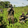 U.s. Marines Guard An Extraction Point by Stocktrek Images