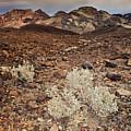 Usa, California, Death Valley, Barren Landscape by Bryan Mullennix