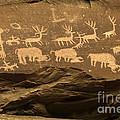 Utah Petroglyphs 1 by Bob Christopher