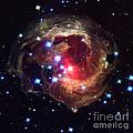 V838 Monocerotis Star by Nasa