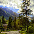 Vail Country Road 1 by Madeline Ellis