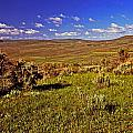 Valley At Fossil Butte Nm by Rich Walter