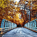 Valley Green Road Bridge In Autumn by Bill Cannon