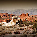 Valley Of Fire by Chris Brannen