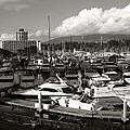 Vancouver Marina by Kamil Swiatek