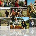 Vanhoozerfarmcomp 2009 by Glenn Bautista