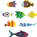 Various Fishes by Eastnine Inc.