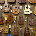 Various Guitars & Ukuleles Hanging From Wall by Lisa Romerein