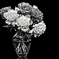 Vase Of Peonies In Black And White by Endre Balogh