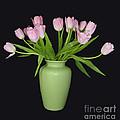 Vase Of Pink Tulips by Sheila Laurens