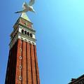 Venetian Fly-by by La Dolce Vita