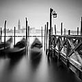Venice Gondolas II by Nina Papiorek