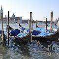 Venice Gondolas by Rebecca Margraf
