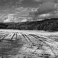 Vermont Farm by Frank Burnside