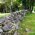 Vermont Stone Wall by Sherman Perry