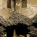 Verona Courtyard II In Sepia by Greg Matchick