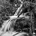 Vertical Falls Bw by Mitch Johanson