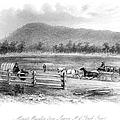 Victoria, Australia, 1856 by Granger